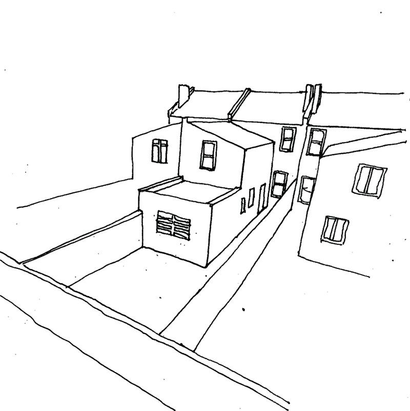 birch sketch 3
